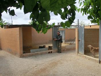 Residencia Canina en Alicante